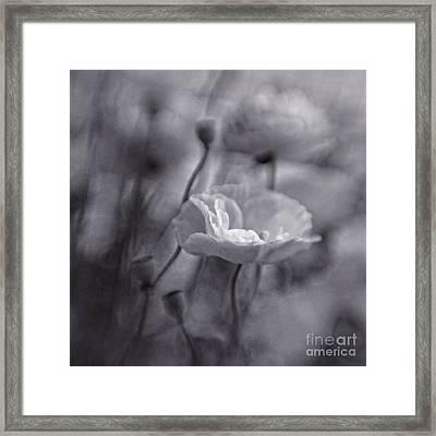 summer whispers III Framed Print