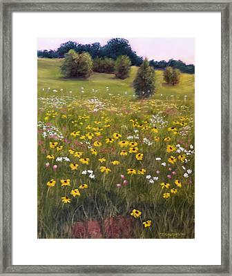 Summer Wildflowers Framed Print by Joan Swanson