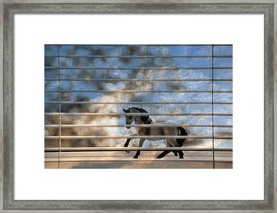 Summer Window 2 Framed Print