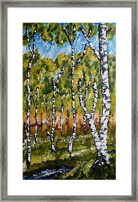 Summerforest Framed Print by Zeke Nord