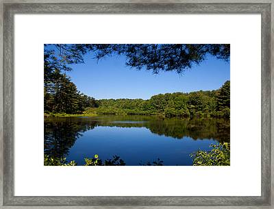 Summers Blue View Framed Print by Karol Livote