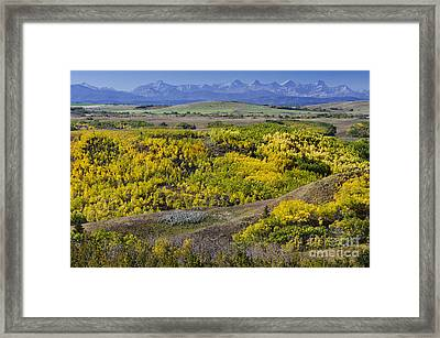 Summer's Colourful Conclusion Framed Print