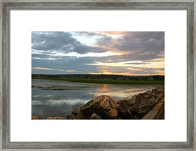 Summer's Glow Framed Print
