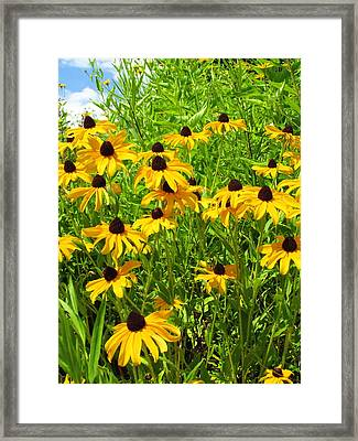 Summer's Love Framed Print by Andrea Dale