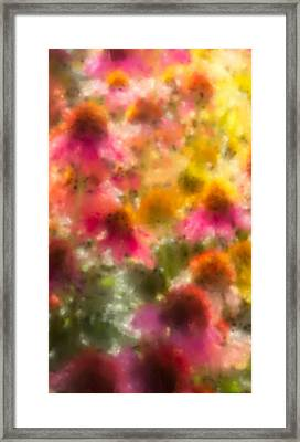 Summer's Palette Iphone Case Framed Print