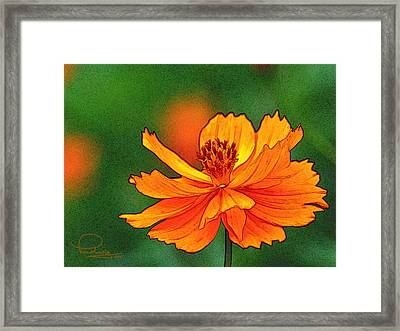 Framed Print featuring the photograph Summertime 6 by Ludwig Keck