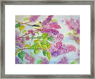 Summertime Arrival II - Goldfinch And Lilacs Framed Print by Kathryn Duncan