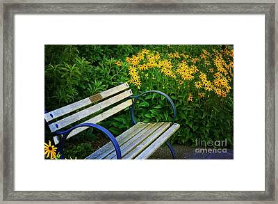 Summertime Bench Framed Print by Maria Janicki