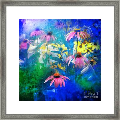 Summertime Blues Framed Print