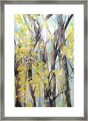 Summertime In The South Framed Print by Robin Miller-Bookhout