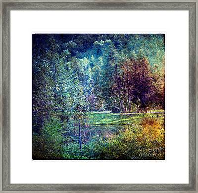 Distant Memory Framed Print