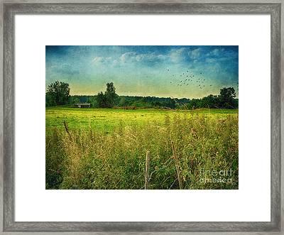 Summertime Framed Print by Jutta Maria Pusl