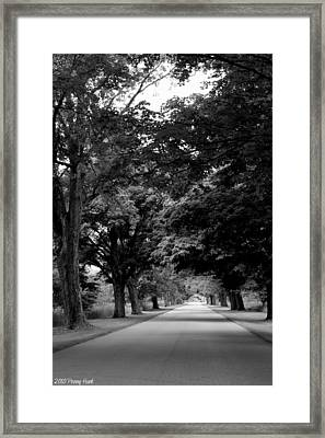 Framed Print featuring the photograph Summertime River Oaks Park by Penny Hunt