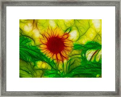 Sun And A Flower Framed Print by Omaste Witkowski