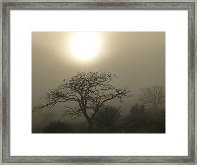 Sun And Fog Framed Print