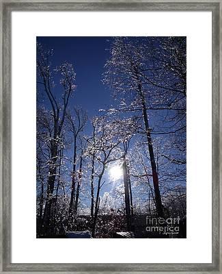 Sun And Ice Framed Print by Lyric Lucas