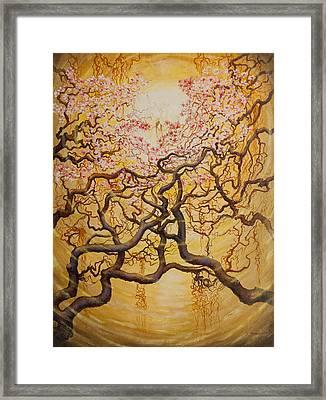 Sun And Sakura Framed Print by Vrindavan Das