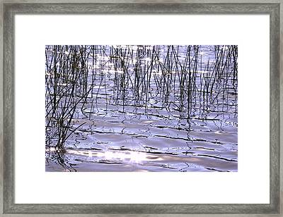 Sun And Water Framed Print