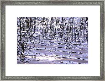 Sun And Water Framed Print by Susan Crossman Buscho