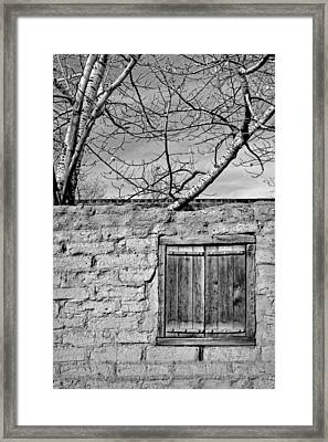 Sun-baked In Black And White Framed Print by Nikolyn McDonald