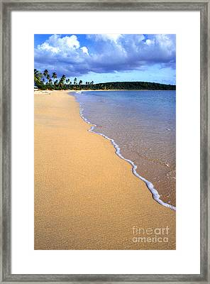 Sun Bay Framed Print by Thomas R Fletcher