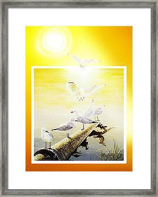 Sun Birds Framed Print