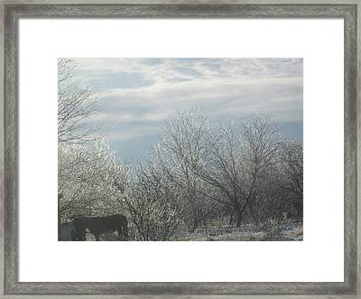 Sun Breaking Through Framed Print by Rosalie Klidies