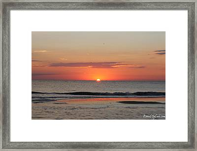 Framed Print featuring the photograph Sun Colors by Robert Banach
