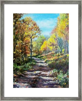 Sun Dappled Path Framed Print
