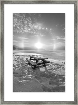 Sun Dog Bw Framed Print by Rose-Maries Pictures
