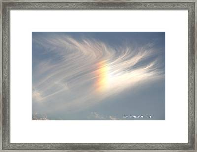 Sun Dog Framed Print by Carolyn Postelwait