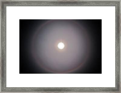 Sun Dog Framed Print by Joel Loftus