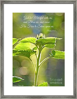 Sun Drenched Sunflower With Bible Verse Framed Print by Debbie Portwood