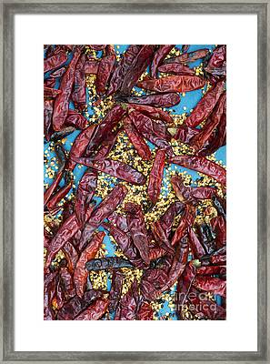 Sun Dried Red Chilli Peppers Framed Print by Tim Gainey