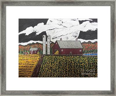 Sun Flower Farm Framed Print