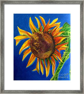 Sun Flower Framed Print by Grace Liberator