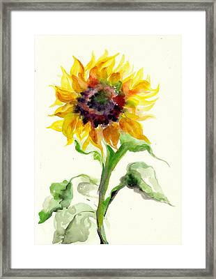 Sunflower Watercolor Framed Print