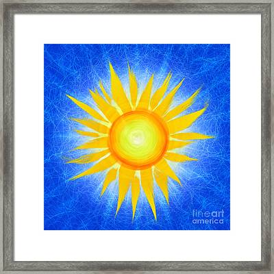 Sun Flower Framed Print by Tim Gainey