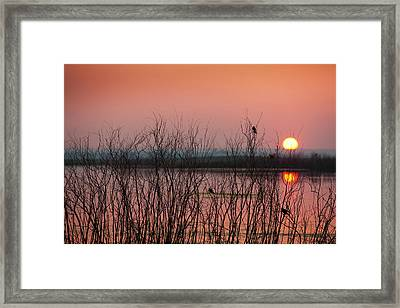 Sun Glowing In A Pink Sky At Sunset Framed Print by Greg Huszar