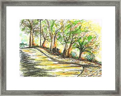 Sun Glowing Through Trees Framed Print by Teresa White
