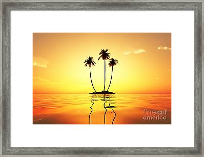 Sun In Palms Framed Print