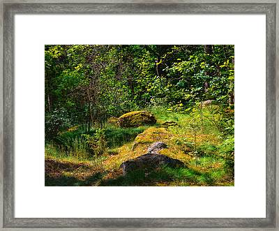 Framed Print featuring the photograph Sun In The Forest by Leif Sohlman