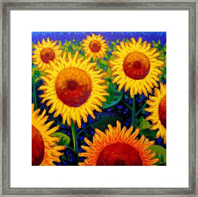 Sun Lovers II Framed Print