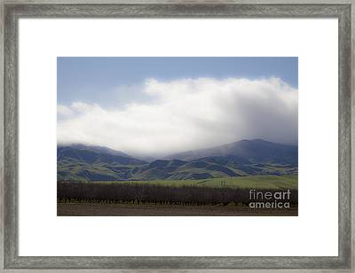 Sun On The South Tehachipis Framed Print by Rich Collins