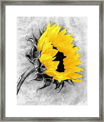 Sun Power Framed Print