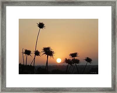 Sun Rise On Bethsaida Framed Print
