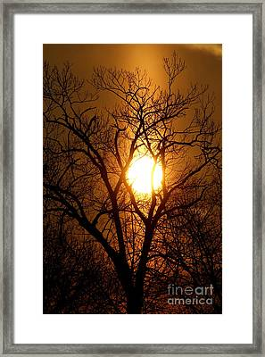 Sun Rise Sun Pillar Silhouette Framed Print by Kenny Glotfelty