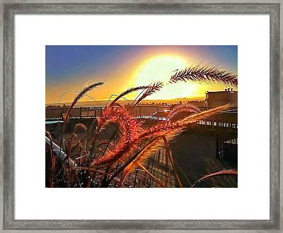 Sun Rises Wheatley Framed Print by Eddie G
