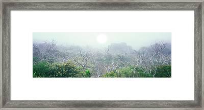 Sun Sets Through Coastal Fog Framed Print by Panoramic Images