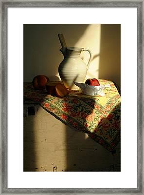 Sun Shade Framed Print by Diana Angstadt
